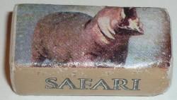 hippopotame-face-1634